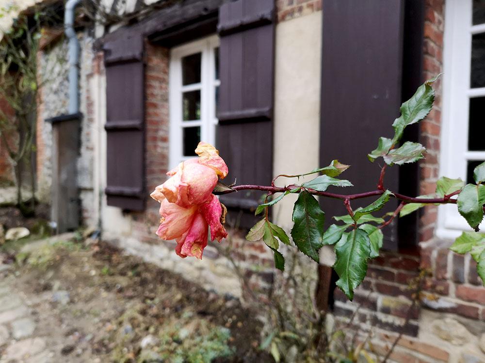 Жерберуа (Gerberoy) – деревня роз в Пикардии