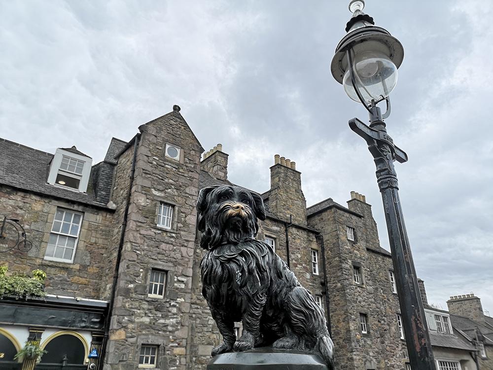 Эдинбург. Пёс Бобби, медведь Войтек и маленький слонёнок