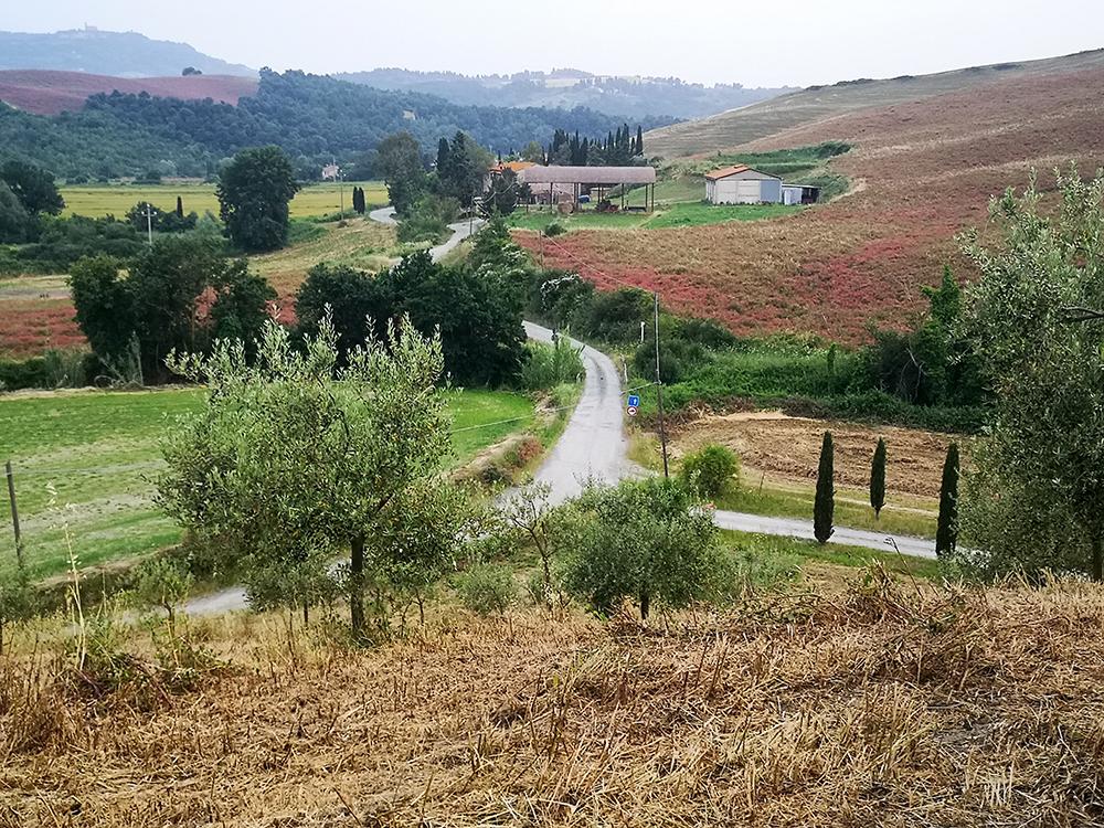 Агротуризм в Тоскане. Самый лучший дом
