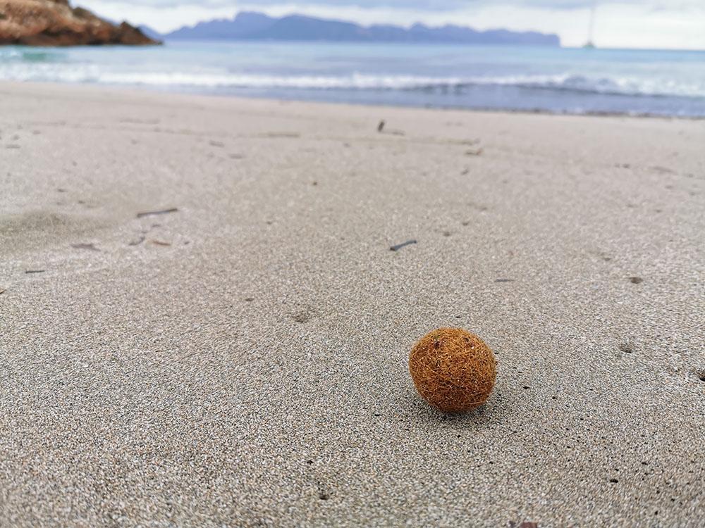 Алькудия. Пригород, пляжи, море…