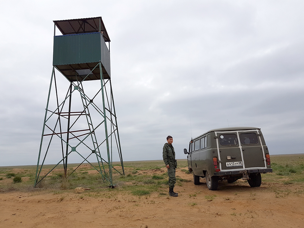 Как в Калмыкии экологи патрулируют степь в заповеднике «Черные земли»