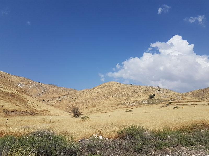 Израиль. Голанские высоты — репортаж с сирийской границы