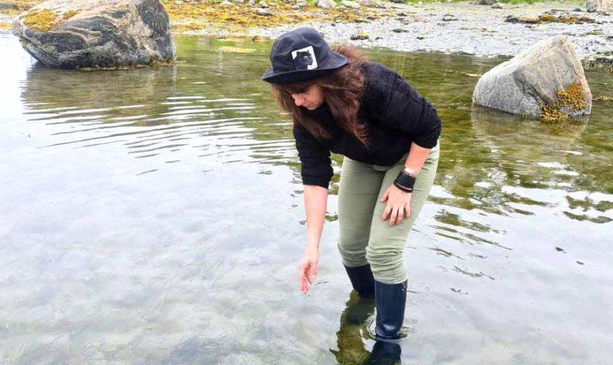 Отпуск за Полярным кругом. Как мы ловили моллюсков с неприличным названием на Белом море